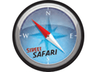 Capa Estepe Ecosport/Crossfox/Aircross/Spin Safari